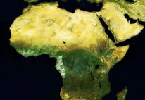 13 aziende per l'africa