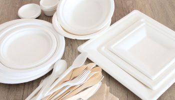 prodotti-per-privati-piatti-usa-e-getta-biologici