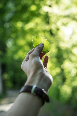 sostenibilità-aziendale-come-abbracciarla