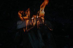 amazzonia-brucia-wwf