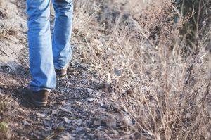 walk-compagni-di-cammino