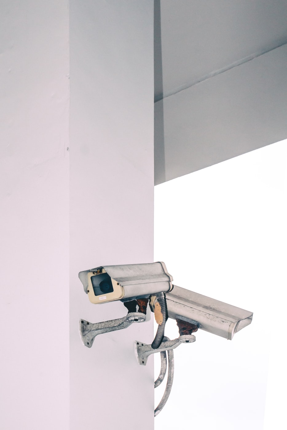 proteggere-fonti-di-reddito-integrità-prodotto